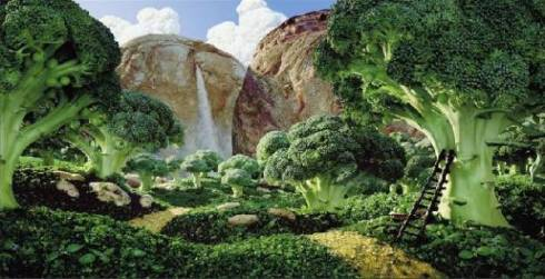foresta_di_broccoli-1483-600-450-70